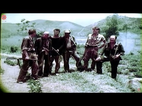Best Vietnam Movies | Lives of the jungle | War Movies - Full Length English Subtitles