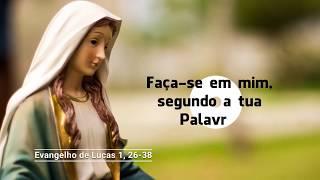 O Evangelho do dia com Dom Mário Spaki 22-08-2019
