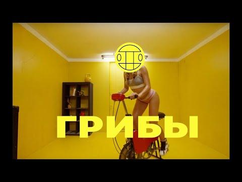 Грибы - Велик