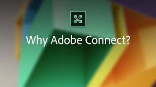 Adobe Connect video