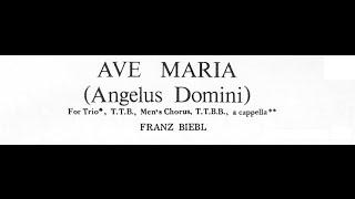 Biebl - Ave Maria (Angelus Domini) for Men's Chorus (with score)