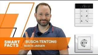 Busch Tenton KNX Tastsensor | preiswerter KNX Taster von Busch Jaeger | was kann er?