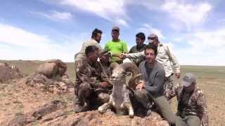 Mongolia Argali Hunts