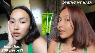 DIY TIPID HAIR COLOR NO BLEACH (BREMOD)