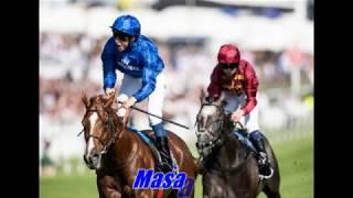 Godolphin's Top 20 Racehorses