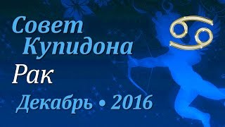 Рак, совет Купидона на декабрь 2016. Любовный гороскоп.