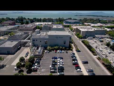Visitor Site Safety Video: Bayer Berkeley