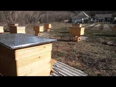 25 марта убираю рамки со склада в ульи