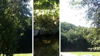 preview picture of video 'Emmihof ... bei der Hitze mit den Pferden zur Goldach in St.Wolfgang'