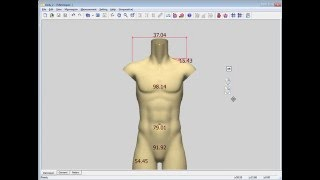 How to load body Male C avt into the LookStailorX