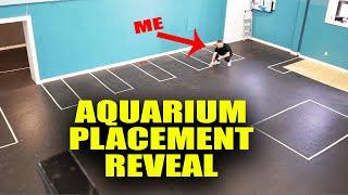 AQUARIUM GALLERY fish tank placement REVEAL! The king of DIY