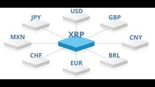 Ripple XRP Will Be A Global Bridge Currency