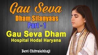 Gau Seva Dham Silanyaas Part -1  Gau Seva Dham Hospital  Hodal Haryana Devi Chitralekhaji