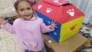 Kediciklerin evini rengarenk boyuyoruz, Tahminimizden güzel oldu, eğlenceli çocuk videosu