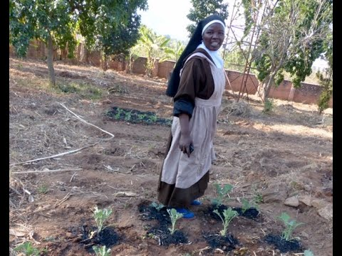 Sustainable Farming to Relieve Hunger in Malawi