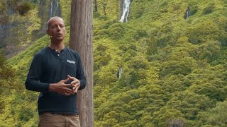 Transforming Aid Work Through Holistic Thinking  | Justin Vero | TEDxLagoadasPatas