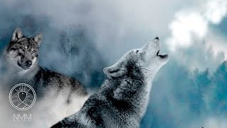 Native American Meditation Music: Flute Music, Spiritual Healing music, Shamanic Meditation Music