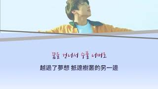 韓中字|Euphoria : Theme of LOVE YOURSELF 起 Wonder - Jungkook(BTS) M/V ver.