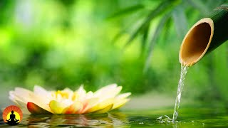 🔴 Relaxing Music 24/7, Boost Positive Energy 528Hz, Meditation, Healing, Zen, Sleep, Spa, Study