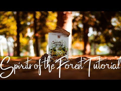SPIRITS OF THE FOREST IN ~4 MINUTES