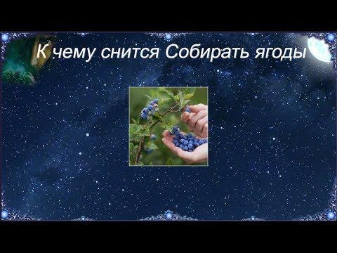 К чему снится Собирать ягоды (Сонник)