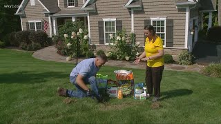 How to prepare your lawn for spring ahead of time
