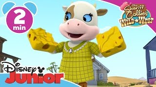 Sheriff Callie | Dusty's Birthday | Disney Junior UK