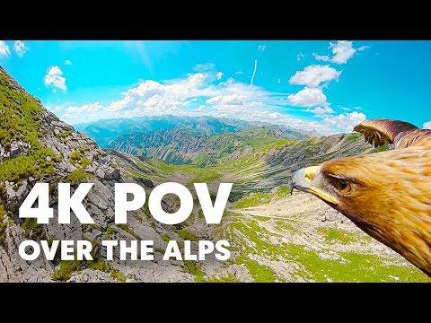 Как выглядят Альпы глазами орла (видео)