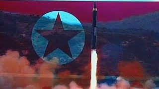 'Beautiful to see' next-gen missile 'we made ourselves' – North Korean citizen