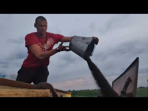 Посевная. 30 гектар за день/Семья Фетистовых