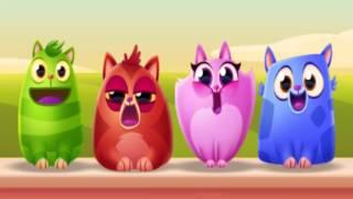 Cookie Cats Barbershop Quartet