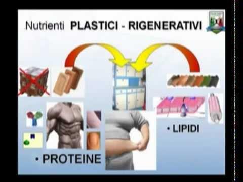 In totale su proteine per perdita di peso