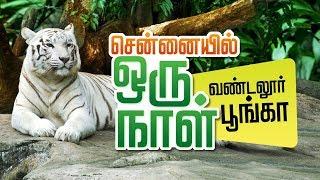 VANDALUR ZOO | Arignar Anna Zoological Park,Vandalur,Chennai | Chennai ZOO