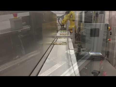 Empacadora 2-EZ HS Ergobot Con Robot Para Empacar Bolsas de Dulce