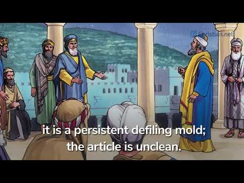 Leviticus 13:47 – 59: Regulations About Defiling Molds |Bible Stories