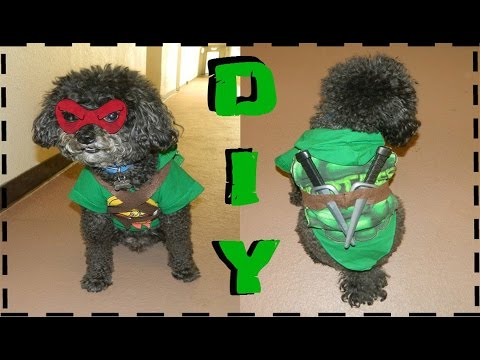 DIY Teenage Mutant Ninja Turtle Dog Costume (No Sew)