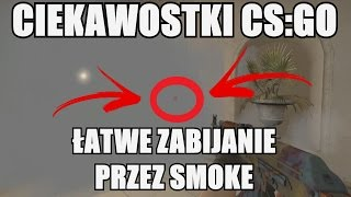 5 CIEKAWOSTEK Z CS:GO - Jak łatwo zabijać przez smoke nie używając WH? #22