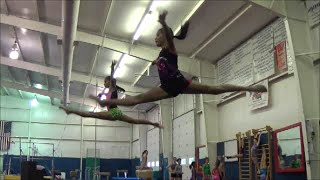 "GYMNASTICS ""All You Need Is A Dream,"" by Melody Williamson-Written by Coach Donna Hughes"