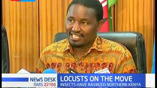 Locusts have ravaged Northern Kenya, desert locusts reach Meru and Isiolo County
