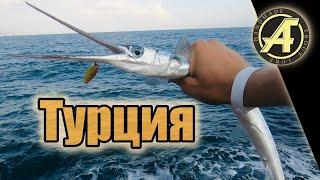 Рыбалка морская в турции
