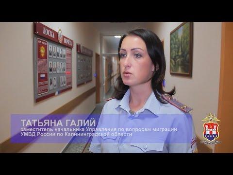 Госуслуги по вопросам миграции в Калининградской области
