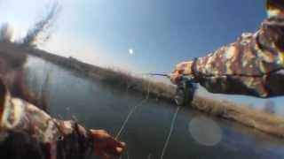 preview picture of video 'Форель нахлыстом !'