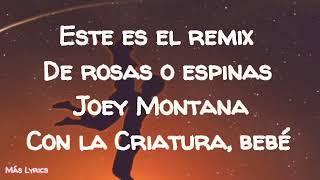 🔊 Rosas O Espinas (LetraRemix)   Joey Montana Ft Nacho