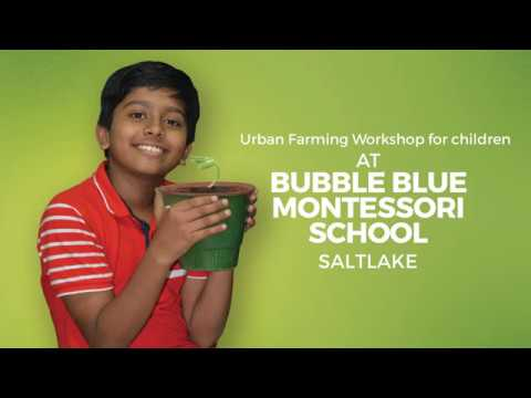 Urban Farming Workshop for children
