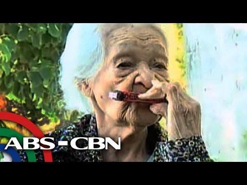 Proteksyon laban sa halamang-singaw at kahoy mga peste