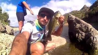 Pesca de Black Bass - Rockfishing - A pie del veril