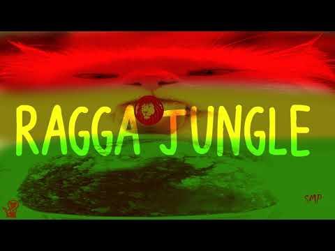 Ragga Jungle -  Vocal Dub Mix Winter Mix By Simonyan #343