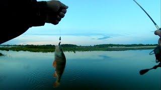 Спиннинг RoseWood 602 UL с АлиЭкспресс. Обзор и короткая рыбалка на окуня.