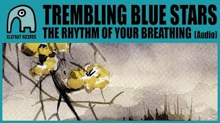 The rhythm of your breathing - Trembling blue stars