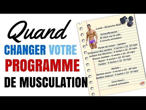 Les exercices sur les muscles du ventre pour les débutants